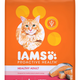 IAMS Proactive Health Salmon Dry Cat Food