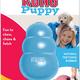 KONG Puppy Treat Insert Teething Rubber