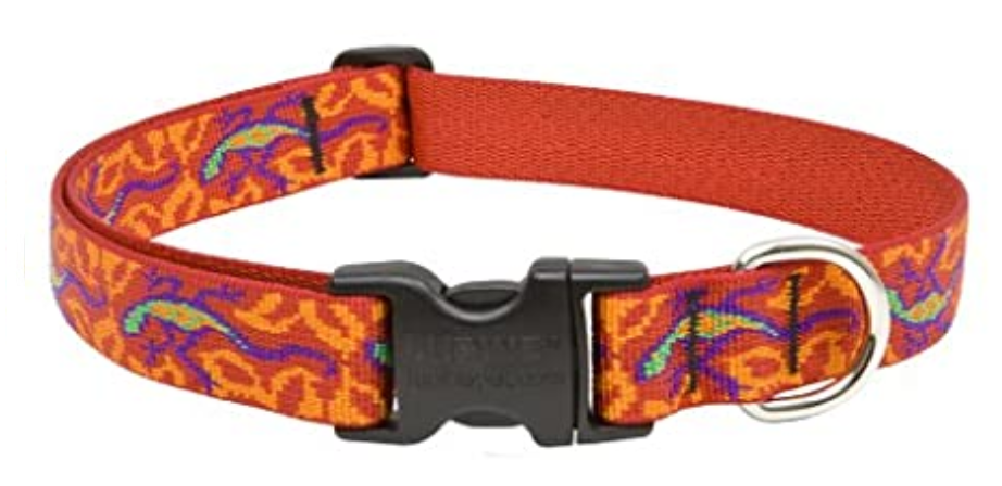 LUPINE Gogo Gecko Dog Collar