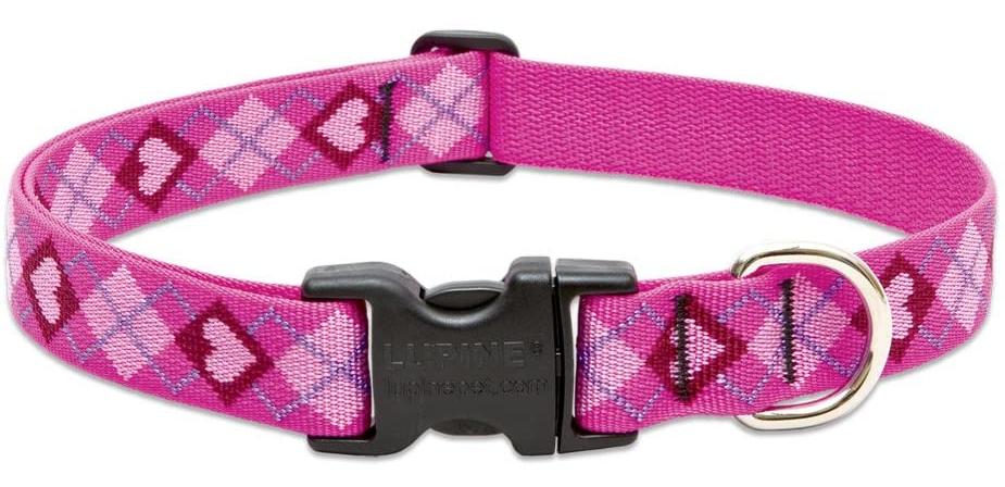 LUPINE Puppy Love Dog Collar
