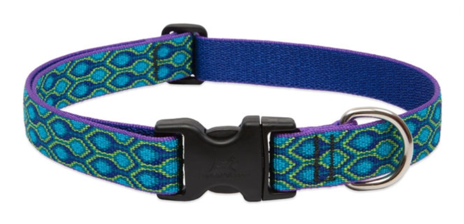 LUPINE Rain Song Dog Collar