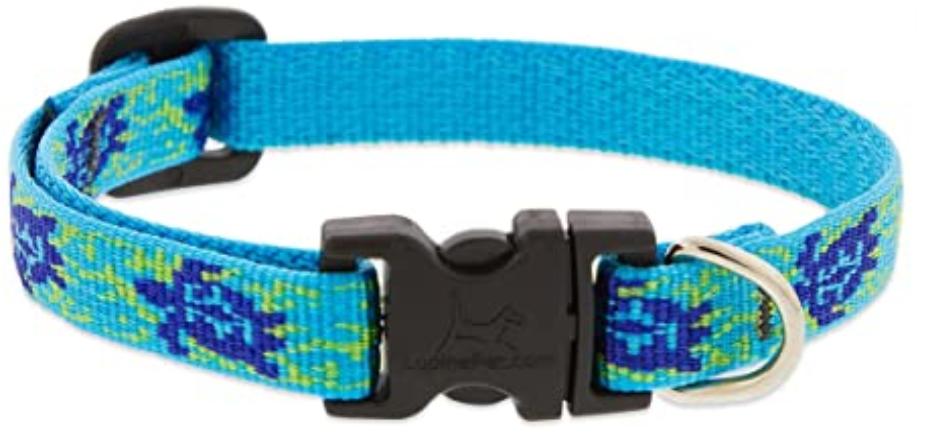 LUPINE Turtle Reef Dog Collar