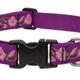 LUPINE Rose Garden Dog Collar
