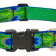 LUPINE Tail Feathers Dog Collar