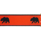 PRESTON Bear Dog Collar