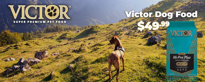 Victor Dog Food for $49.99