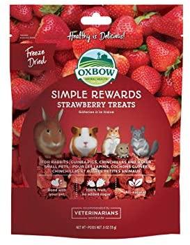 Oxbow Simple Rewards Strawberry Treats