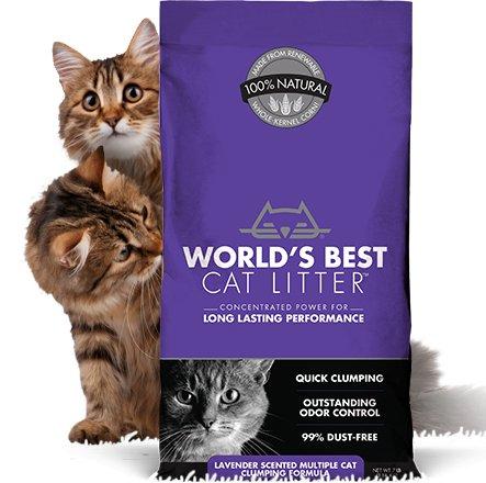 World's Best World's Best Clumping Litter Multi Cat Lavender 14lb