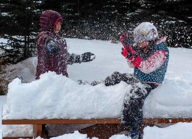 Winter Mitts & Gloves