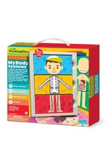 4M My Body Systems