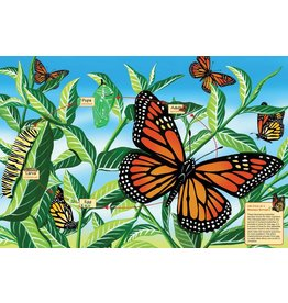 Cobble Hill Life Cycle of a Monarch Butterfly Puzzle