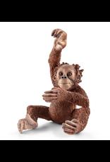 Schleich Young  Orangutan (14776)