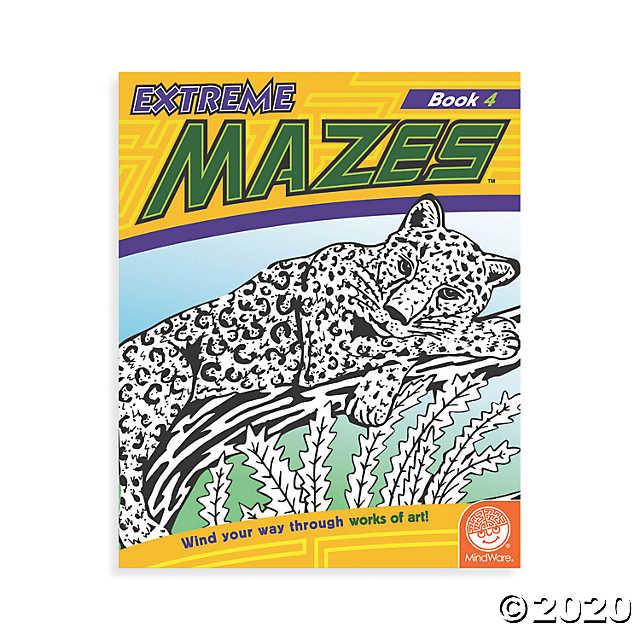 MindWare Extreme Mazes: Book 4