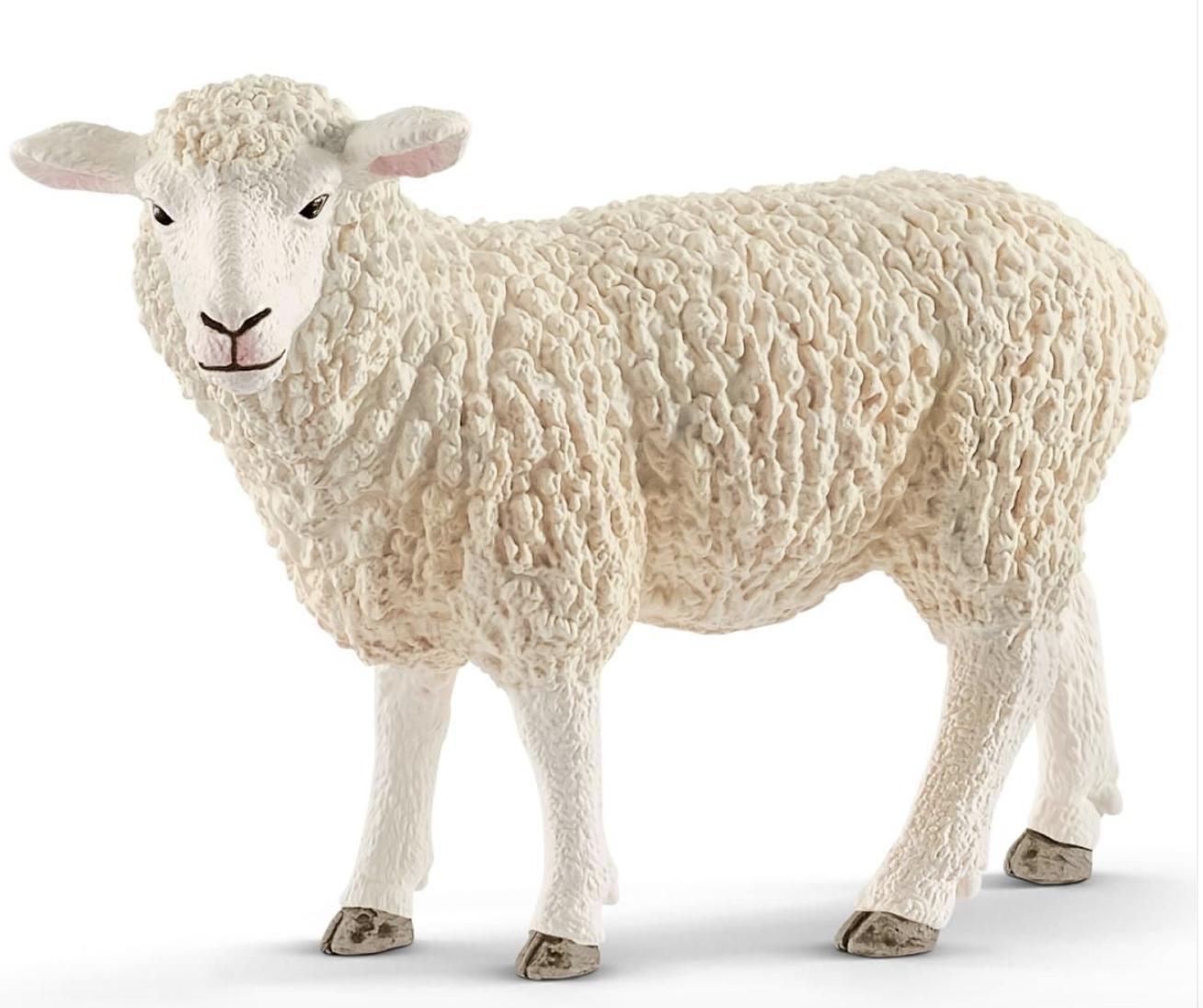 Schleich Sheep 13882