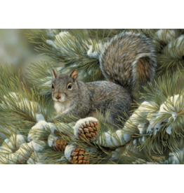 Cobble Hill Gray Squirrel