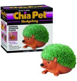 Chia Pet Hedgehog Chia Pet