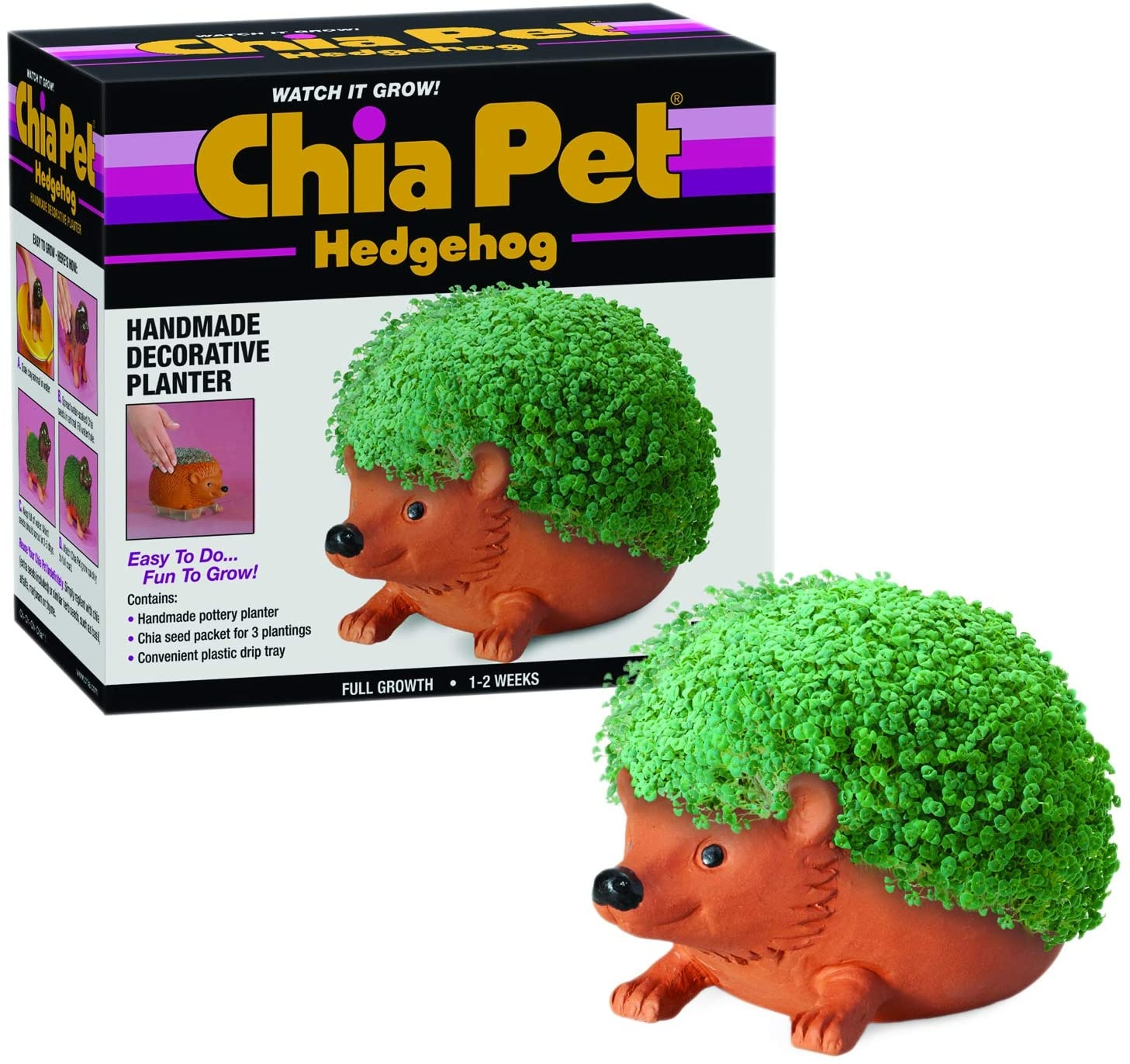 Chia Pet Hedgehog Chia Pet