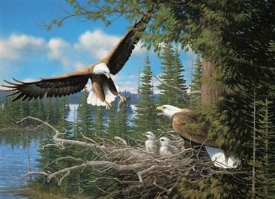 Cobble Hill 1000 Piece Puzzle Nesting Eagles