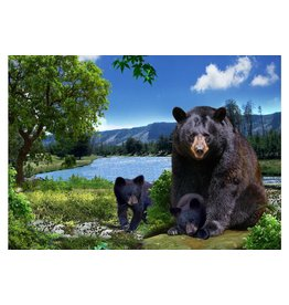 Wild Republic Black Bear Fridge Magnet