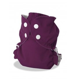 AppleCheeks Cloth Diaper Cover Suddenly Royal