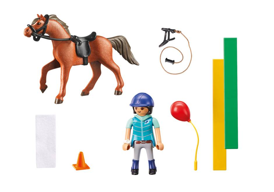Playmobil Horse Therapist