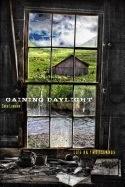 Gaining Daylight:,Life on Two Islands - Loewen, Sara