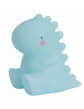 Little Lovely T-Rex Bath Toy