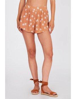 Amuse Society Rum Beach Shorts