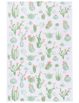 Danica/Now Linge Cacti