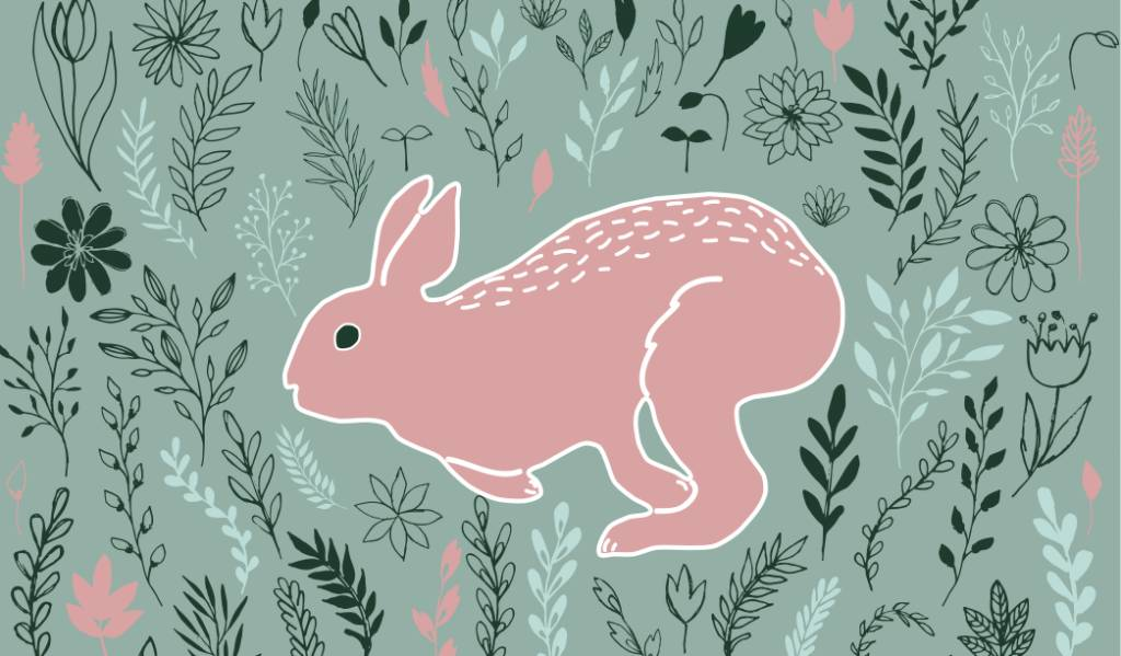 Bunny Small Card