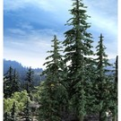 Grand Central Gems 295-T38 Large Lodgepole Trees, 3Pcs.