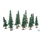 "JTT 92037 Evergreen Tree 3' to 5""-12/pk."