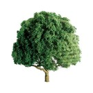 "JTT 94264 3"" Oak Tree 2/pk, HO"