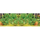"JTT 95526 Tomato Plants, O Scale, 1.5"" tall"