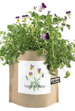 Potting Shed Creations Garden in a Bag - Happy Birthday