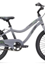 "Giant Giant Moda 20"" Grey Bicycle"