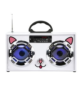 Mini Boom Box Cat