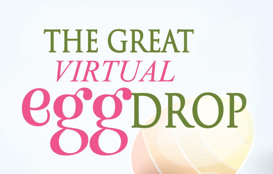 Virtual Egg Drop
