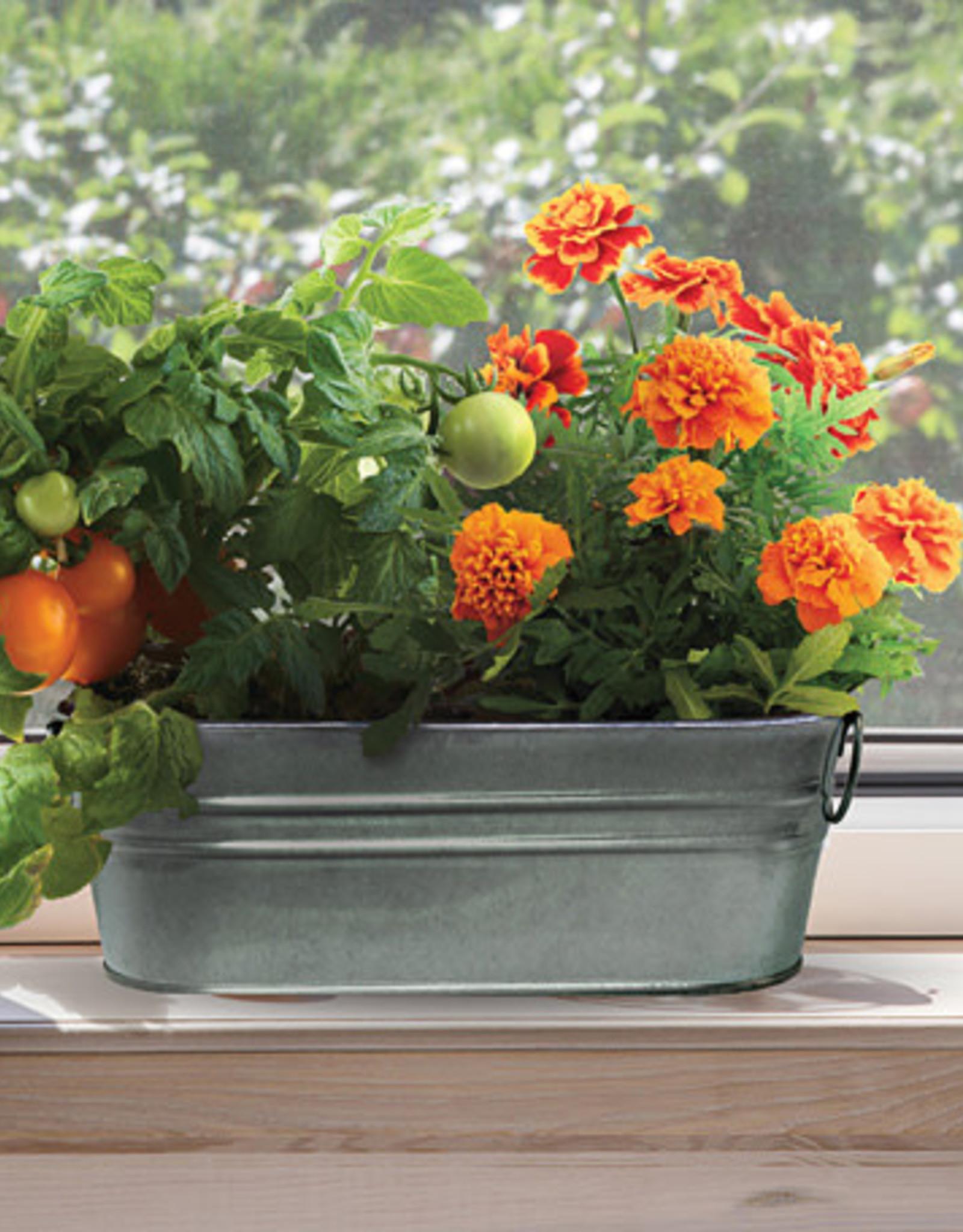 My First Garden Windowsill Grow Kit