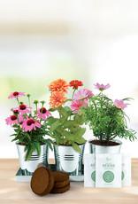 Save the Bees 3 Pot Windowsill Grow Kit