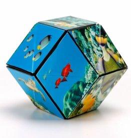 Shashibo The Shape Shifting Box - Undersea