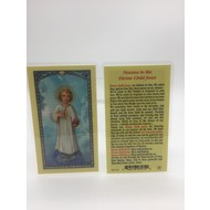 Novena to Divine Child Jesus Holy Card