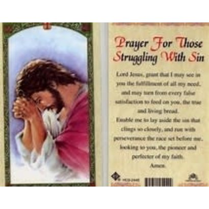 Prayer For Those Struggling with Sin Laminated Holy Card, Printed in Italy