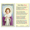 Litle White Guest Laminated Holy Card, Printed in Italy