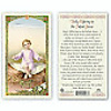Daily Offering to the Infant Jesus Laminated Holy Card, Printed in Italy