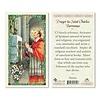 Prayer to Saint Charles Borromeo Laminated Holy Card, Printed in Italy
