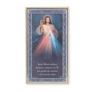 Divine Mercy, 5x9, Spanish