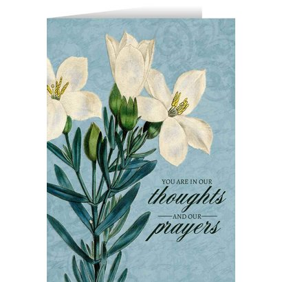 Blank Greeting Card: You are in Our Thoughts and Prayers