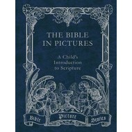 The Bible in Pictures Stories: A Child's Introduction to Scripture