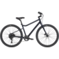 Cannondale Cannondale Treadwell 2 2020